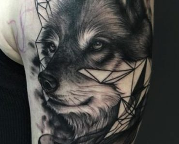 Dynamic Wolf by Ashla Bee at Human Kanvas in Airdrie, AB