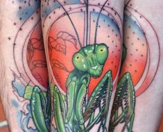my Praying Mantis forearm by Cody Eich at Time Will Tell Tattoo (Burlington, ON)