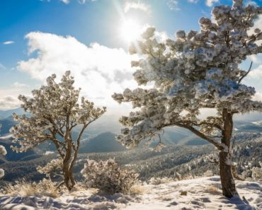 Fresh sun on a fresh snow, Boulder, Colorado