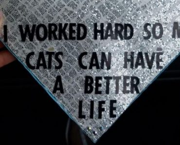 7 graduation caps that will put a smile on your face