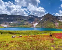 Dudipatsar Lake, Lulusar-Dudipatsar Nationwide Park, Pakistan